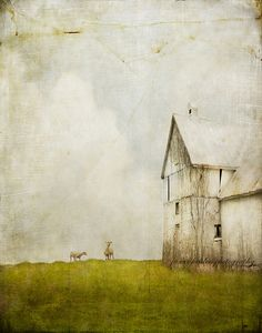 the importance of wonder... by jamie heiden, via Flickr