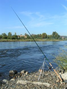 Best Fishing Rods Learn how to catch any kind of fish with great tips including lures and bait at howtocatchfishnetwork.com