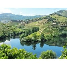 A Port Wine Tour in Douro Valley, Portugal - via Why Waste Annual Leave? 01.08.2016 | A teetotaler's take and blog review of a one day Port Wine Tour from Porto to the breathtaking UNESCO listed Douro Valley Region of Portugal Photo: Douro Valley