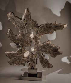 Infinite Ray, Teakwood, Quartz Crystal, Healing Sculpture by fine artist Dorit Schwartz