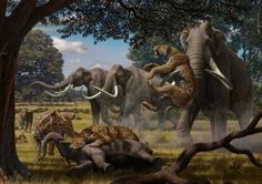 Mammoths and Saber-Toothed Cats