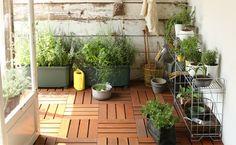 いかがだったでしょうか?これからの季節、ベランダで太陽を感じながら園芸にTRYしてみるのもなかなか悪くないものですよ。この機会に自分で作った野菜を是非食べてみてくださいね!