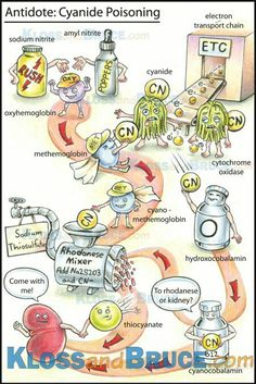 Cyanide poisoning Antidote...
