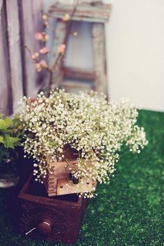 Baby's Breath displayed in wooden drawers