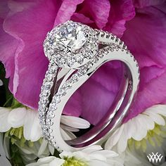 Simply stylish, Amphora Diamond Engagement Ring and Diamond Wedding Ring Diamond Wedding Sets, Wedding Ring Bands, Wedding Rings Vintage, Engagement Ring Settings, Diamond Engagement Rings, Wedding Engagement, Mother Of The Bride Hats, Dimond Ring, Invitation Templates