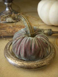 Velvet pumpkin with horn stem