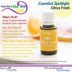 Young Living Essential Oils: Antidepressant Bacteria Citrus Fresh  Decongestant Diuretic Fat Cellulite