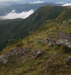 Pico do Papagaio - MG