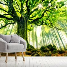 Search Results | Wallsauce AU Tree Scene Wallpaper, Wall Wallpaper, Tree Wall Murals, Mural Wall Art, Designer Wallpaper, Living Spaces, Search, Outdoor Decor, Furniture