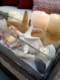 180 PCS Sea Shells Mixed Beach Seashells Starfish, Colorful Natural Seashells Lb Perfect Accent for Candle Making, Home Decoration, Beach Theme Party Wedding Décor, Fish Tank and Vase Filler - The Crafts Guide Simple Centerpieces, Party Centerpieces, Centerpiece Ideas, Seashell Centerpieces, Nautical Centerpiece, Quinceanera Centerpieces, Beach Bathrooms, Beach House Decor, Home Decor