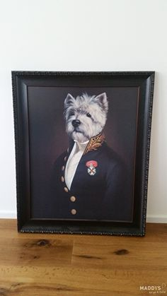 Hond in uniform