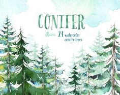 Conifer Trees. Watercolor pine, spruce, forest, wood, landscape, frame, quote, hand painted clipart, greeting card, diy clip art, christmas by OctopusArtis on Etsy https://www.etsy.com/listing/245976177/conifer-trees-watercolor-pine-spruce