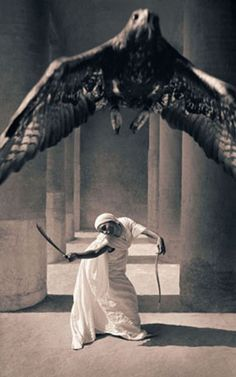 ♂ man and nature woman and eagle by Gregory Colbert