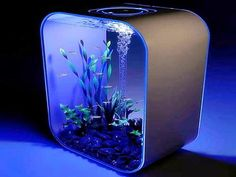 cool aquarium lighting decoration ideas pictures