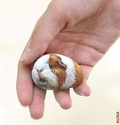 Hand painted rock. Guinea pig 6. by Alika-Rikki, via Flickr    Yer! I gotta learn this.