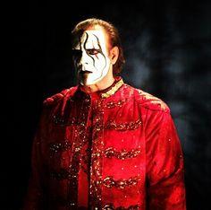 """The Icon"" Sting"