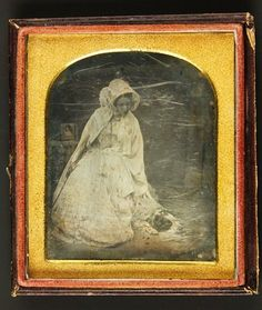 Daguerreotype 1 6th Plate Lady Petting Springer Spaniel Hunting Dog | eBay