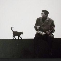 Sé que me acordaré de un cielo raso donde las manchas de humedad eran un gato, un número, una mano cortada • Julio Cortázar