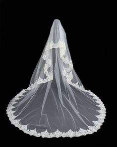 Velo realizado con puntilla de hilo de seda, encajes bordados Fashion, Embroidered Lace, Sequins, Silk Thread, Bugle Beads, Veils, Brides, Moda, Fashion Styles