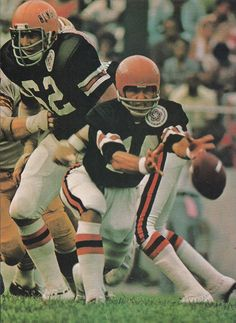 The Bengals' QB Kenny Anderson tosses the football. Nfl Football Players, Ohio State Football, Football Memes, Football Stuff, School Football, American Football League, National Football League, Football Photos, Sports Photos