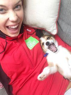 Like owner, like dog..?