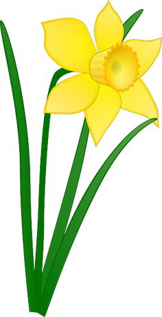 Daffodil Flower Clip Art Clipart Panda Free Clipart Images - Clipart Suggest Easter Flowers, Glass Flowers, Diy Flowers, Yellow Flowers, Spring Flowers, Daffodil Flowers, Free Clipart Images, Art Clipart, Vector Free