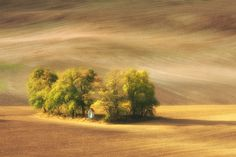Chapel by Marcin Sobas, via 500px