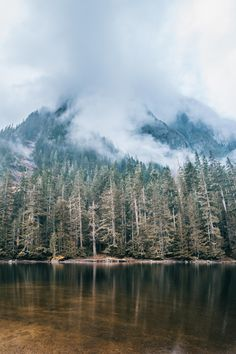 Barclay Lake - Morgan Phillips