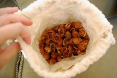 What are Soap Nuts and How to Use Them!