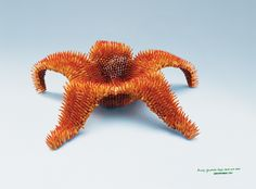 #supernature #Greenpeace ads made with pencils