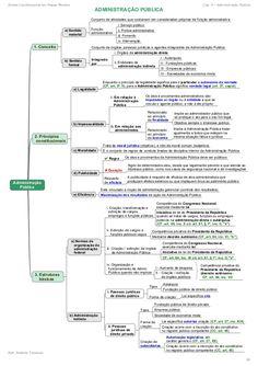 5 Direito Constitucional em Mapas Mentais Cap. 4 - Administração Pública Prof. Roberto Troncoso 30