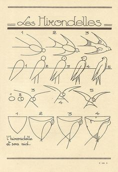 les animaux, easy animal drawings, set by step bird drawing, simple, line, illustration