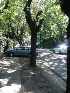 Mi barrio, mi calle...