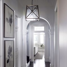 Norfolk lantern with cross bars in its natural habitat....a beautiful classical entrance hall.  #architecture #australianmade #decorating #home #hamptons #housebeautiful #interiors #islandbench #interiorstyle #interiordesign #interiordecorating #lights #lighting #renovating
