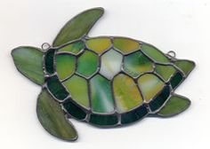 Sea Turtle...reminds me of my grandson...instant smile