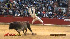 ch the bull dancing in spain. Youtube, Spain, Classroom, Dance, Bucket, Animals, Videos, Amazing, Zaragoza