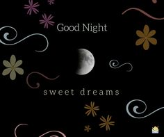 Amazing Good Night Images - Happy Birthday Messages