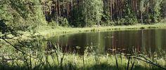 Ktoś wybiera się w Bory Tucholskie ? Pamiętajcie o zabraniu wszystkich niezbędnych rzeczy, by przeżyć urlop, nie obniżając standardów życia. Uczcie się na cudzych błędach.  http://altersee.pl/7-dni-w-borach-tucholskich-12-przydatnych-rzeczy-ktorych-nie-zabralem/