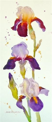 """Homeplace Iris"" - Original Fine Art for Sale - © by June Rollins"