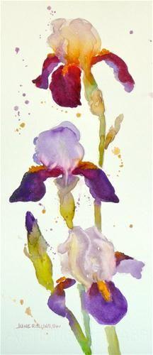 """Homeplace Iris"" - Original Fine Art for Sale - © by June Rollins"