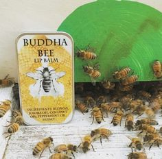 Buddha Bee Lip Balm ~ Variety of Flavors by oMoonFlowerChild on Etsy