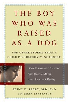 The Boy Who Was Raised as a Dog - A fascinating book on childhood trauma by one of the pioneering psychiatrists in the field of child and adolescent trauma. This is an eye-opening book for anyone who works with children and adolescents, especially those who are survivors of trauma.