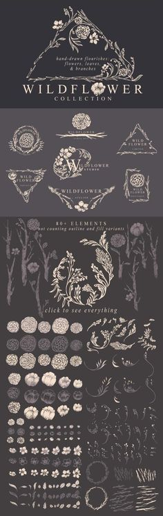 Hand-drawn floral flourishes: flowers, leaves, and branches. Wildflowers in a fairytale forest. Romantic lineart with fine detail and graceful curves, reminiscent of old-fashioned storybook pictures and Art Nouveau period illustrations. Bohemian logo templates included. Perfect for wedding invitations, perfume branding, and garden-themed wallpaper. Check it out on Creative Market!: