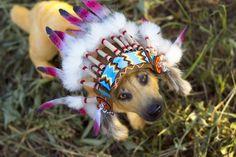 358 отметок «Нравится», 4 комментариев — Julia Gass (@julygass) в Instagram: «#artdoll #arttoy #handmade #ручнаяработа #мех #ooak #творчество #fur #fantasy #beast #like4like…»