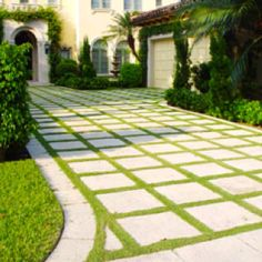 Concrete and grass driveway - um seriously ... can we make this happen?!!