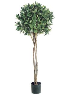 Pack of 2 Potted Artificial Bay Leaf Ball Topiaries 4' -- You can get additional details at the image link.