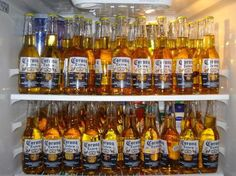 thats what i want my fridge to look like love coronas salt and lime yummy