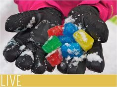 Cheap and easy outside activity for winter. Ice Crystal Scavenger Hunt.