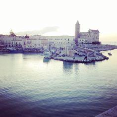 #trani #puglia #porto