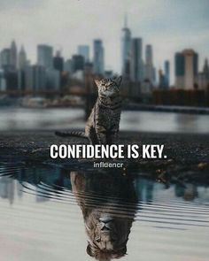 Inspirational Positive Quotes :Confidence is key. Motivational Quotes For Life, True Quotes, Positive Quotes, Best Quotes, Inspirational Quotes, Motivation Quotes, Bisaya Quotes, Message Quotes, Advice Quotes